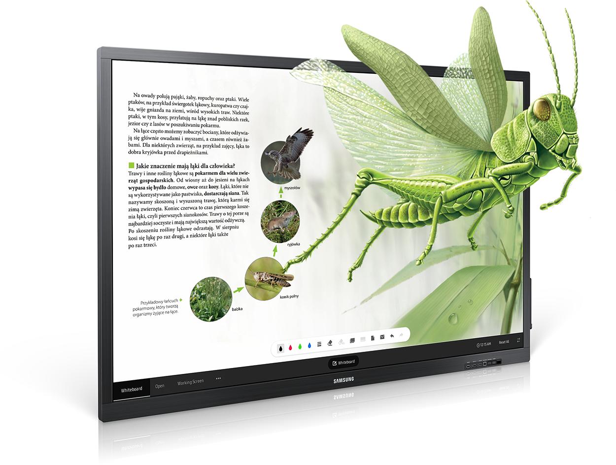 Monitor interaktywny w pracy nauczyciela